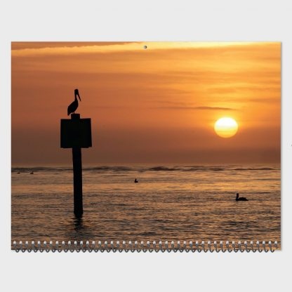 pelican sunset, Florida, July page, 2020 nature photography calendar, Happier Place, wall calendar