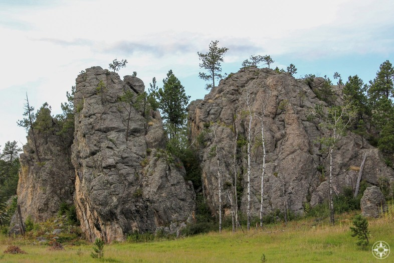 Boulders and trees, south dakota, custer state park