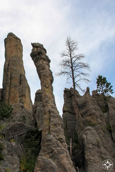 Granite pillars are called The Needles for a reason, amazing Needles Highway