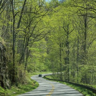 Car on curvey hill road through spring forest, Blue Ridge Mountains