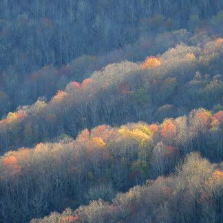 Colorful sunlit trees along ridges of the Blue Ridge Mountains