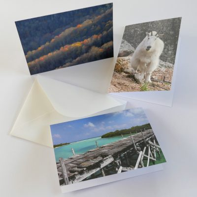 Happier Place folded greeting cards with envelope, nature photography, mountain goat, forest mountain ridges, wooden bridge in Caribbean Sea