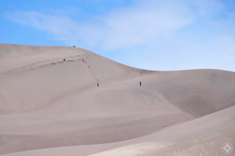 Sand sledding, sandboarding and taking photos of it all in the Great Sand Dunes National Park, Colorado.