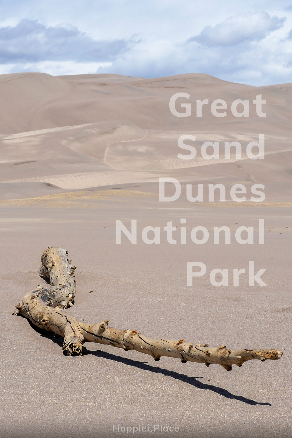 Great Sand Dunes National Park, dead tree in the desert, Colorado, HappierPlace