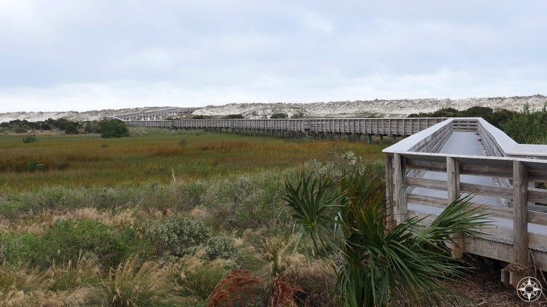 Anastasia State Park boardwalk across wetlands to the dunes, wheelchair access to Atlantic beach - Happier Place