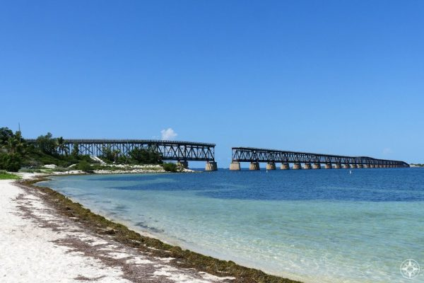 Beach wrack line on Calusa Beach, Old Bahia Honda Bridge, Florida Keys, Happier Place