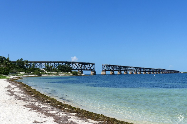 Beach wrack line on Calusa Beach, Old Bahia Honda Bridge, Florida Keys, Happier Place