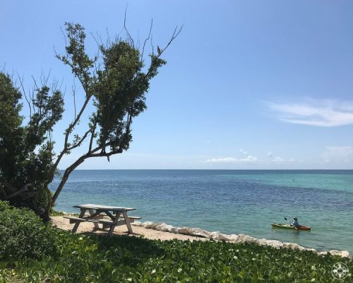 Picnic table in the shade or rent a kayak to explore the sea? Bahia Honda State Park in the Florida Keys offers both and much more.