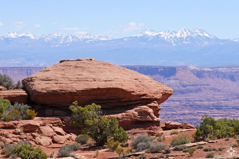 So many rocks, so many different colors and shapes in Canyonlands and the La Sal Mountains in the background.