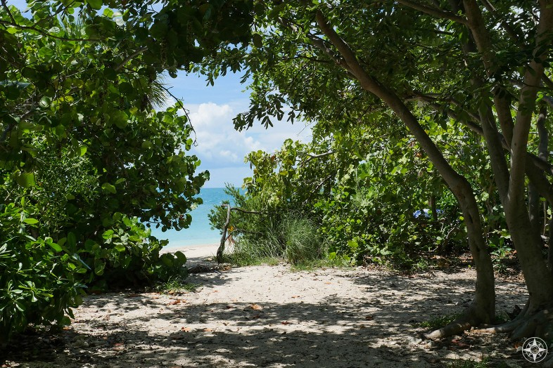 Shade from the trees, sunshine, beach or the Caribbean colored water beyond, Fort Zachary Park, Key West
