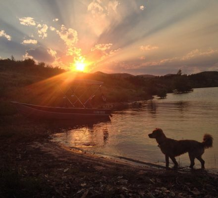 Sunset with dog and boat at the lake, Slow Ride, Fort Collins, Colorado, Whiskey Dog, Happier Place