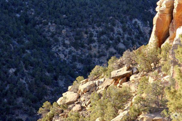 Looking down from Chapin Mesa into Navajo Canyon.