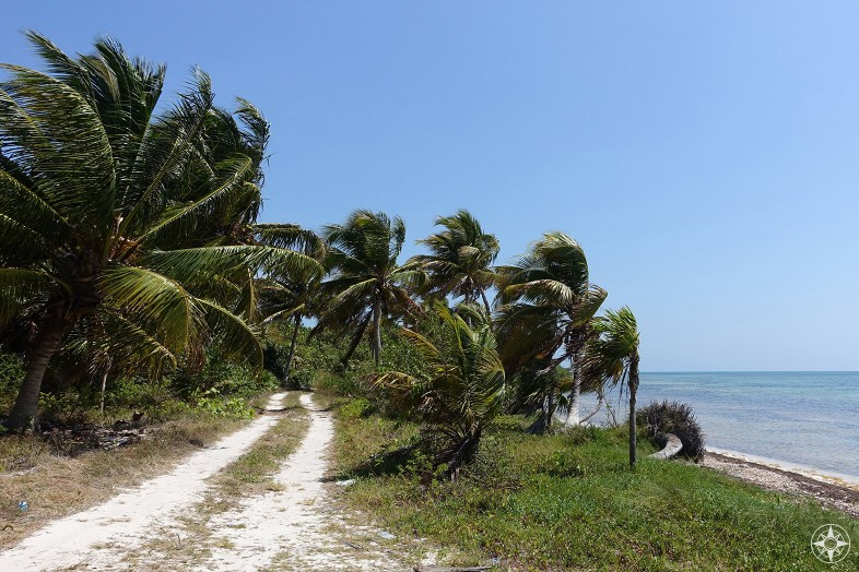 Beach road to the lighthouse in Punta Allen, on the Boca Paila Peninsula in Mexico.