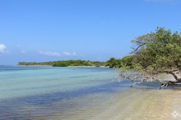The clear waters of Sian Ka'an are perfect for fishing, snorkeling, and being happier.