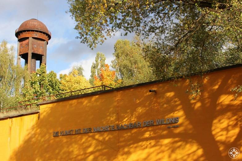Natur-Park Südgelände Berlin - Happier Place