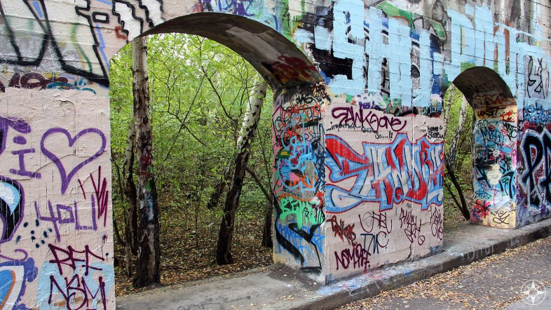 Graffiti-covered wall and the forest beyond. Nature framed by architecture and art. Natur-Park Südgelände Berlin - Happier Place