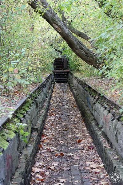 Sunken trail and stairs in Natur-Park Südgelände, Berlin, Germany