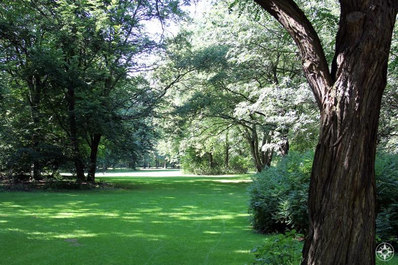 Green meadow in Tiergarten in Berlin - Happier Place