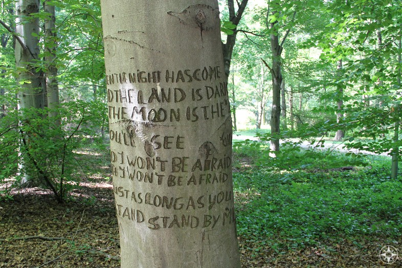 Stand By Me lyrics carved into a tree in the Berlin park Tiergarten