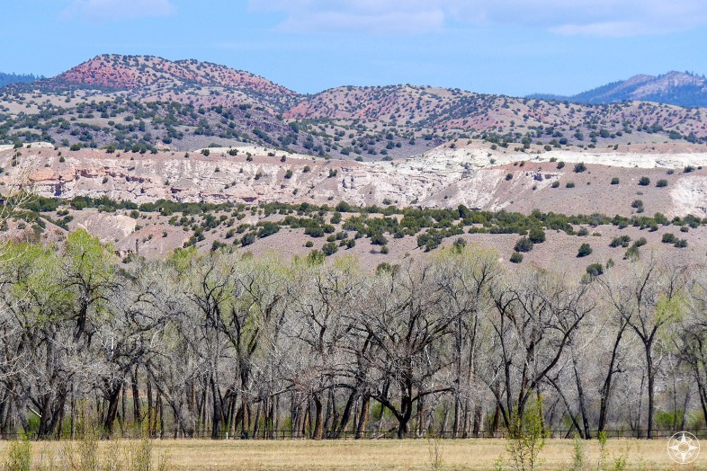 View from Georgia O'Keeffe's house in Abiquiu of cottonwood trees and mountains beyond