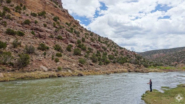 fly-fishing at the Rio Chama just below the dam of the Abiquiú Reservoir.