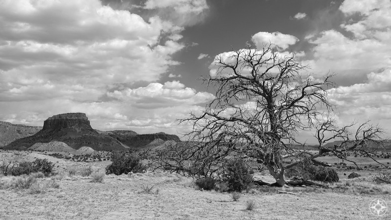 Mesa and tree at Ghost Ranch, Ansel Adams style in black and white