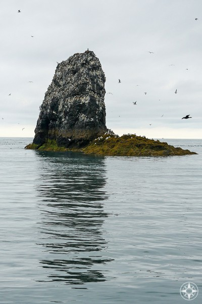 tall rock, water reflection, Gull Island, birds, Kachemak Bay, Alaska