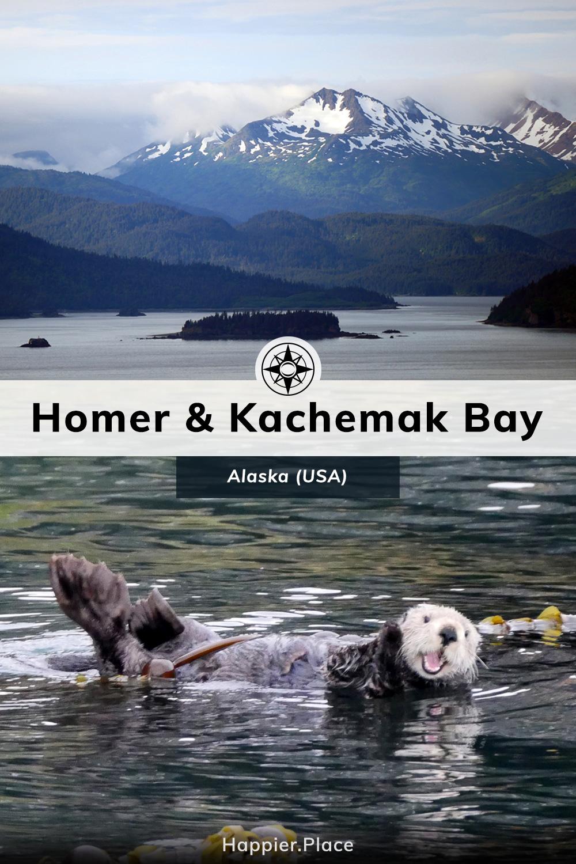 Kachemak Bay and Homer, Alaska, mountains, islands, sea otter
