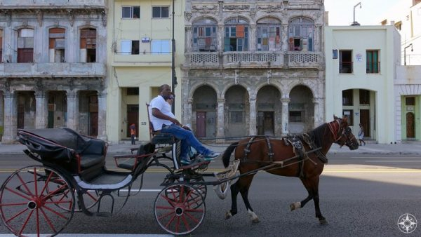 Horse-drawn carriage cruising for tourists in front of the old facades along the Malecón road