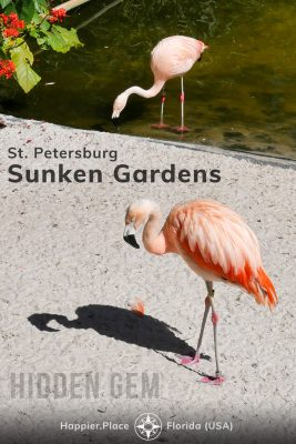 flamingos in St. Petersburg Sunken Gardens, hidden gem in Florida, HappierPlace