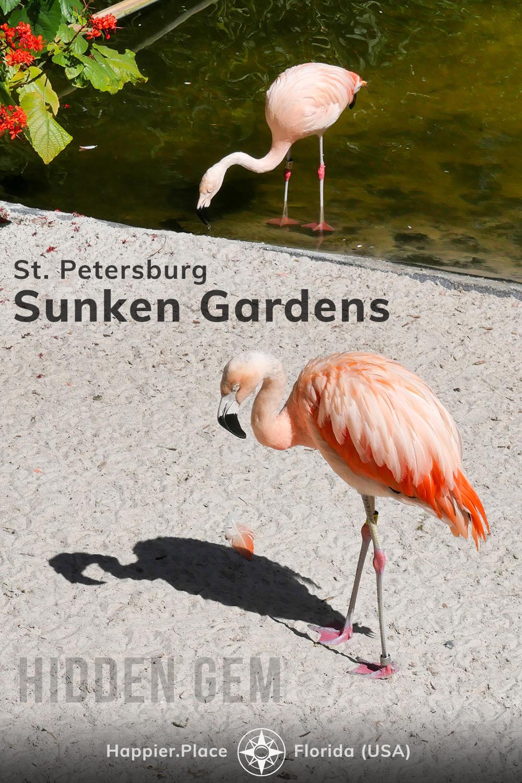 flamingos in St. Petersburg Sunken Gardens, hidden gem in Florida, HappierPlace