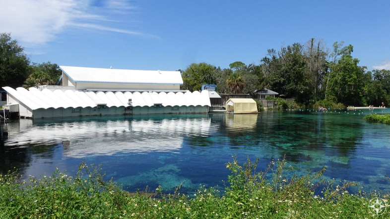 Weeki Wachee Spring wit Mermaid Theater, featuring 400 underwater seats with the perfect view into the spring itself and the Weeki Wachee mermaids.