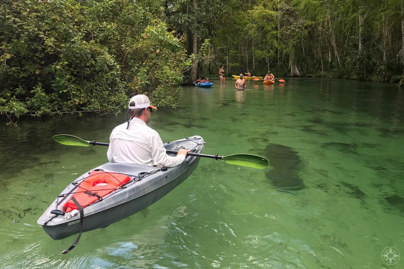 Kayak floating over manatee, swimmers ahead, Weeki Wachee River, Florida