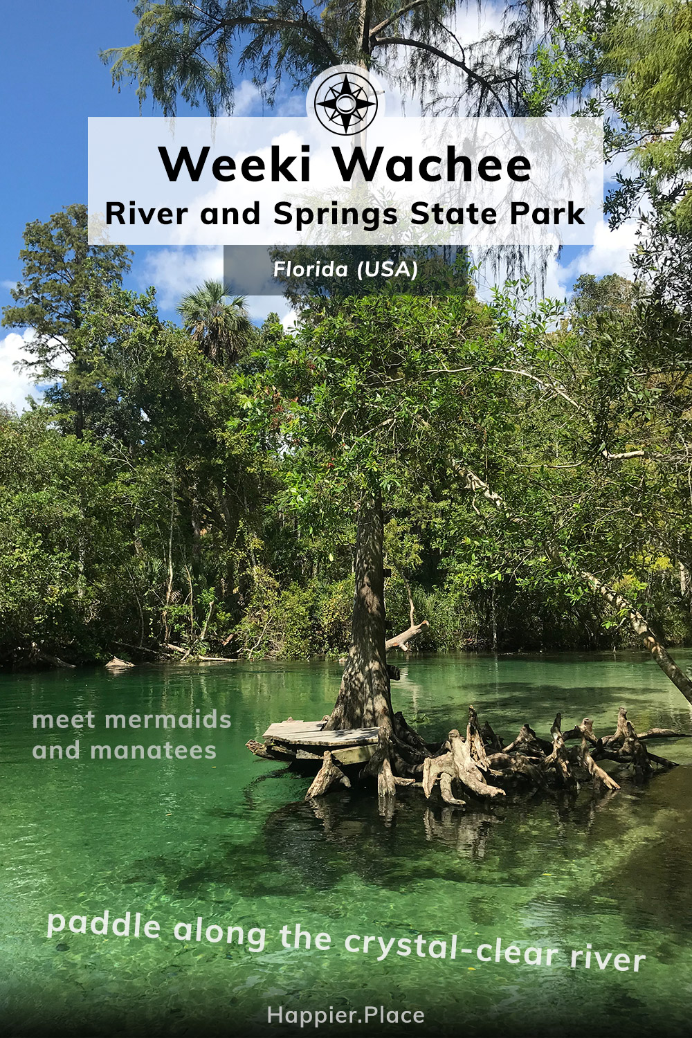 Weeki Wachee River and Springs State Park, Meet mermaids and manatees, paddle down a crystal clear river in Florida
