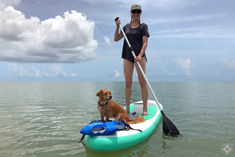 woman stand-up paddle boarding with dog, Do more of what makes you happier place t-shirt