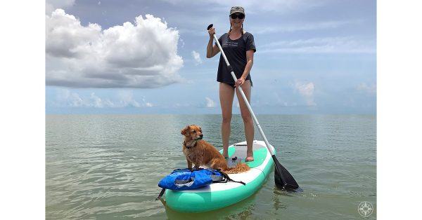 What's so great about stand-up paddle boarding anyway?