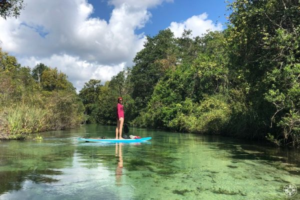 woman on stand-up paddle board on crystal-clear Florida river, Weeki Wachee, Happier Place
