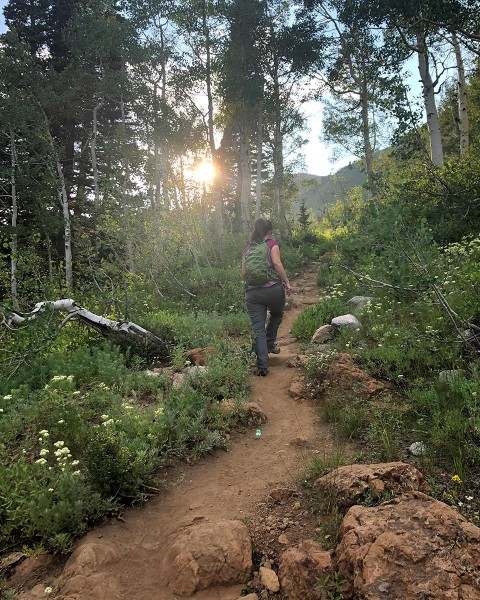 Lost Gorge Mysteries author M.K. Dymock hiking up a mountain trail above Alta Ski Resort, among trees and wildflowers with her trusted day pack.