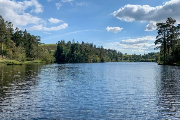 Blue lake, mere or tarn, surrounded by green trees, reflecting blue sky, Lake District, England