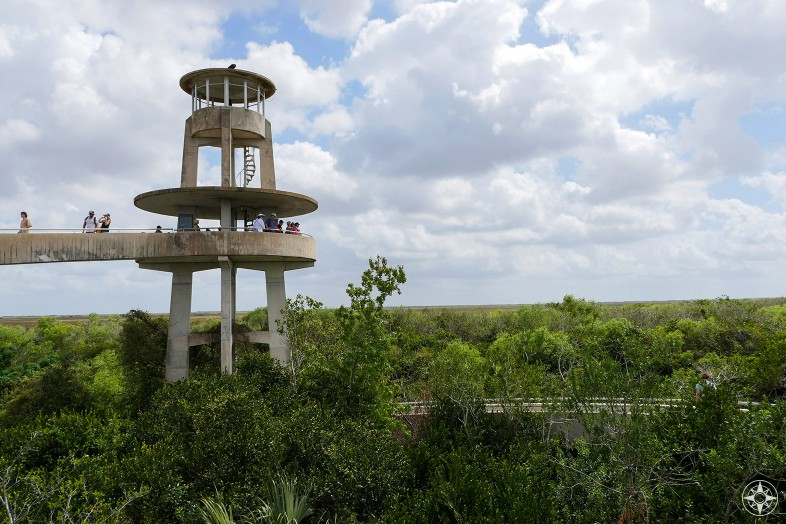 Observation Tower overlooks Shark River Slough at the heart of the Everglades