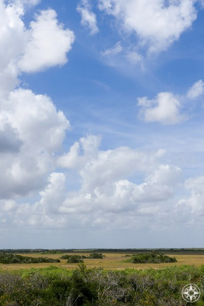 Big subtropical blue sky with white clouds of River of Grass, freshwater marsh, view from Shark Valley observation tower, Everglades National Park