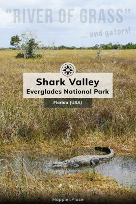River of Grass and Gators, Shark Valley of the Everglades National Park in Florida, Happier Place