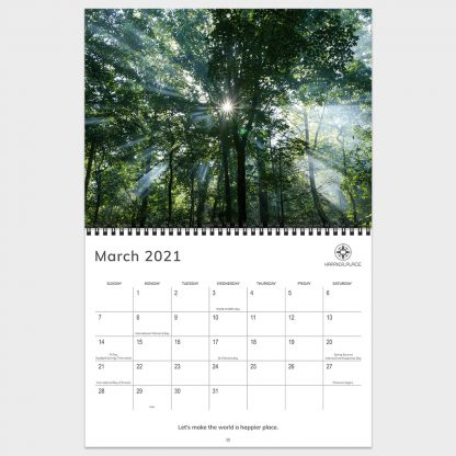 2021 Happier Place Nature Photography Calendar, March calendar pages featuring sunlight rays bursting through trees, Chattahoochee National Forest, Georgia