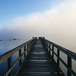 Paynes Prairie Boardwalk over lake with rolling fog, state park, Gainesville, Micanopy, US-441, pic184: Paynes pier into the fog, postcard