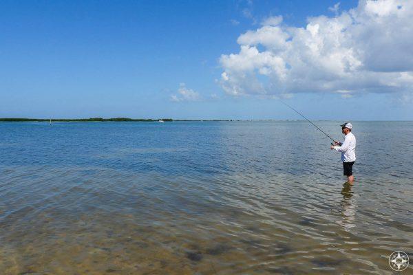 Man, Skinny Water fishing, north end Honeymoon Island, St. Joseph Sound, Tampa Bay, Florida