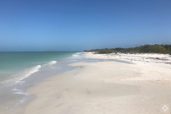 Caladesi Island features big white sand beach, clear water, blue sky, trees