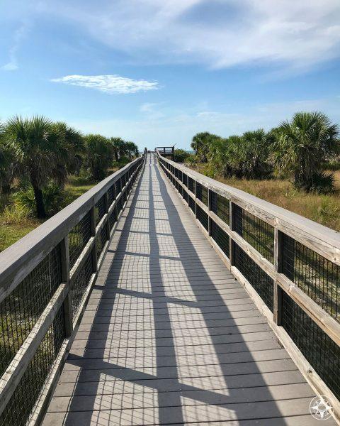 Wooden, elevated board walk to Caladesi Beach