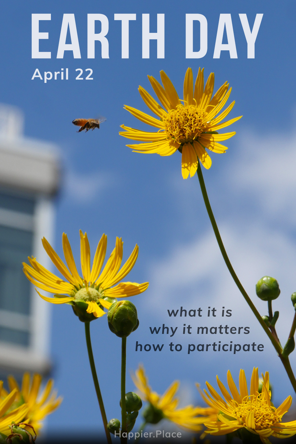 What Is Earth Day? And Why Do We Celebrate It?