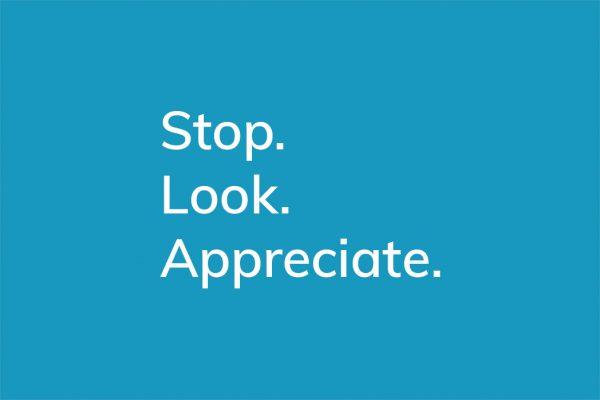 Stop. Look. Appreciate. - HappierPlace txt211 blue