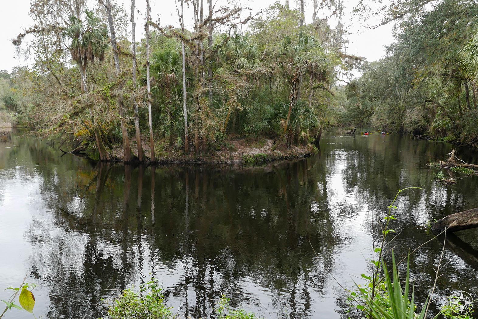 Hillsborough River State Park, Florida, Tampa Bay